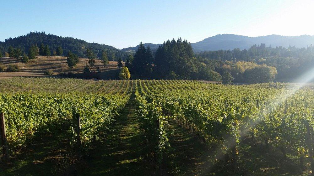 Lumos Wine: 24000 Cardwell Hill Dr, Philomath, OR