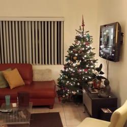 photo of santa mikeys fresh christmas trees pasadena ca united states