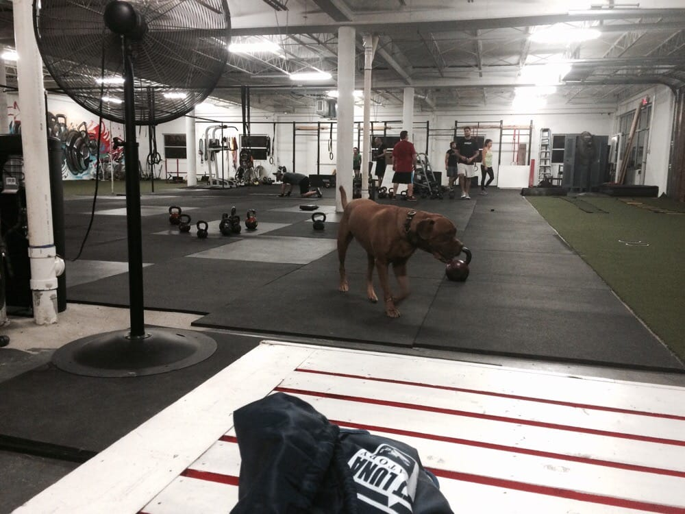 Psycho Gym 2914 Commerce St Dallas, TX Personal ... - MapQuest