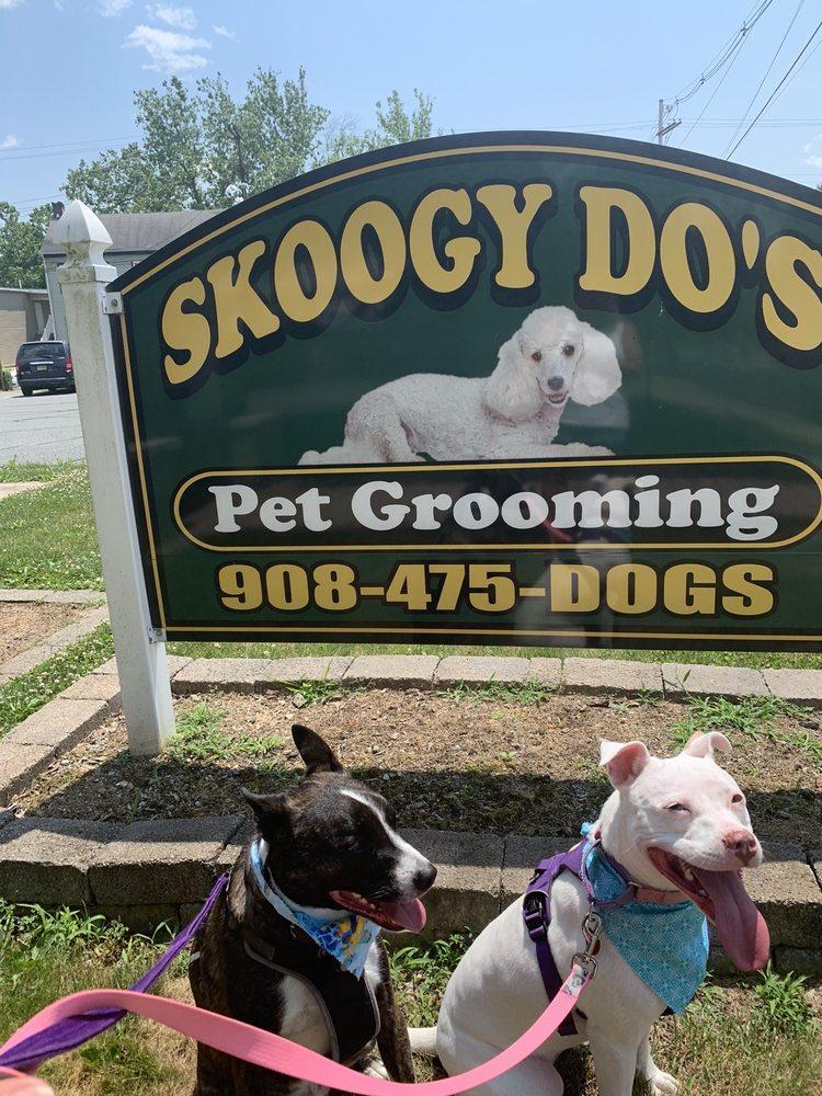 Skoogy Do's: 164 Market St, Belvidere, NJ