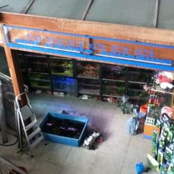 new katong aquarium aquarium 865 mountbatten rd. Black Bedroom Furniture Sets. Home Design Ideas