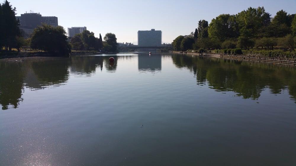 Foto su laghetto dell 39 eur yelp for Pulizia laghetto