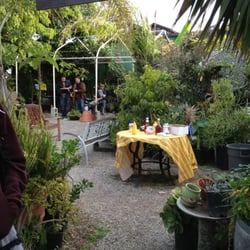 Photo Of Carpinteria Landscape Nursery Ca United States First Friday