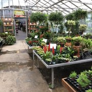 One Of The Photo Mostardi Nursery Newtown Square Pa United States