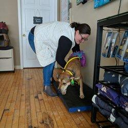 Underdog Pet Rescue of Wisconsin - Community Service/Non