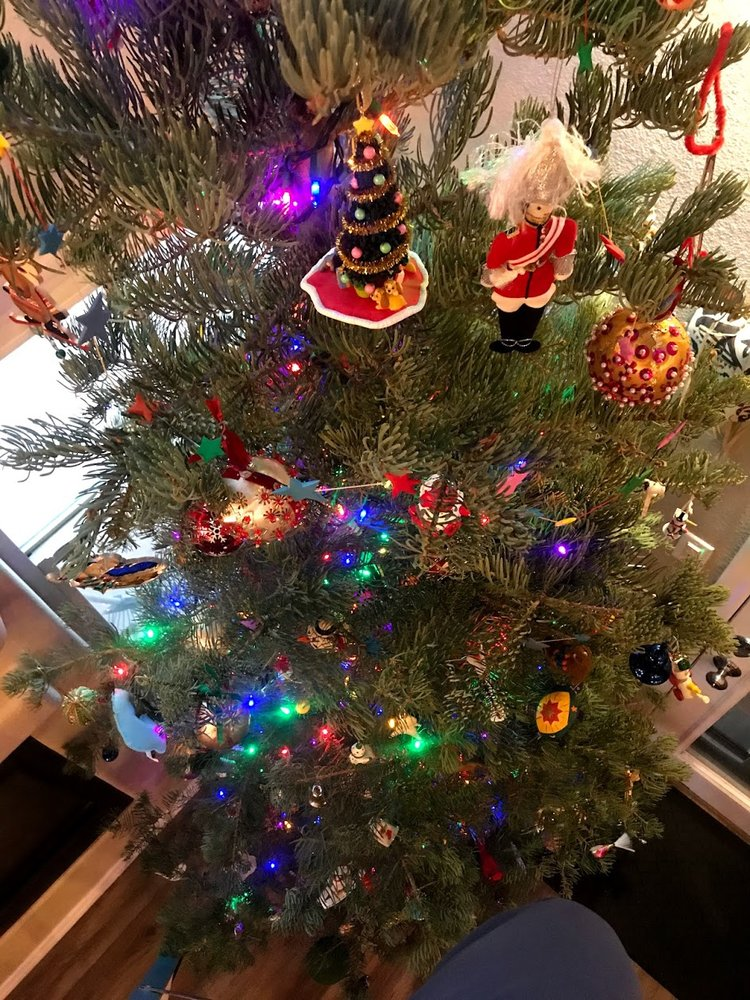 Garcia Family Christmas Trees: 8826 4th St NW, Los Ranchos de Albuquerque, NM