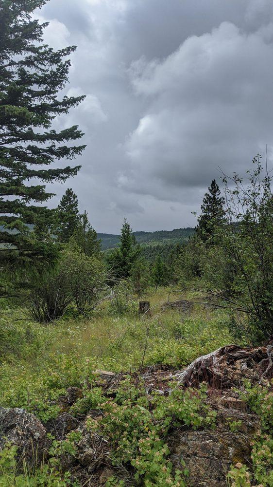 Herron Park: 2310 Foys Lake Rd, Kalispell, MT