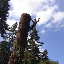 Photo Of Quality Tree Service Oregon City Or United States