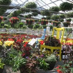 Thomsens Greenhouse Garden Center Nurseries Gardening 29754 156th Ave Saint Joseph Mn