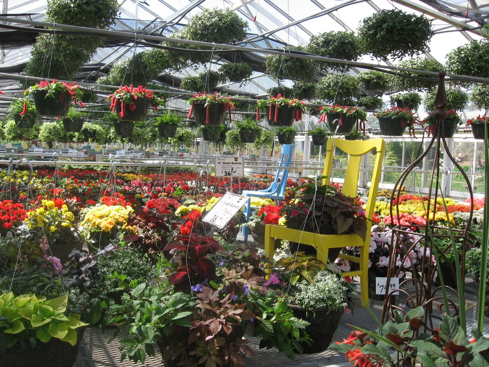 Thomsens Greenhouse & Garden Center: 29754 156th Ave, Saint Joseph, MN