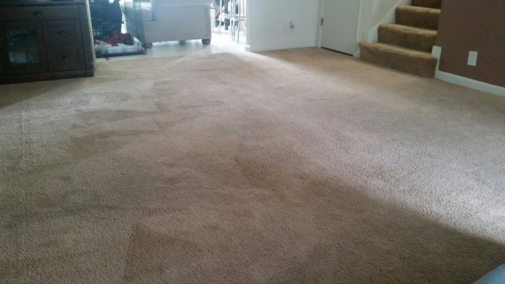 6 photos for Tarantino's Carpet Cleaning