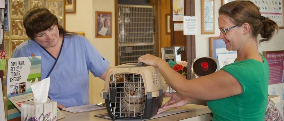 Animal Medical Center of Traverse City: 229 N US Hwy 31 S, Traverse City, MI