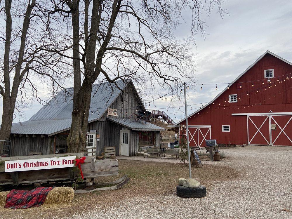 Dull's Tree Farm: 1765 W Blubaugh Ave, Thorntown, IN