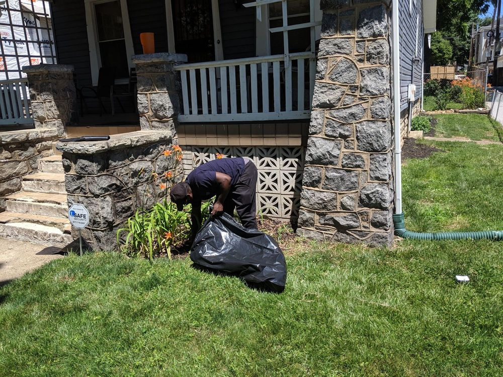 The Georgetown Landscaping Company: Washington, DC, DC