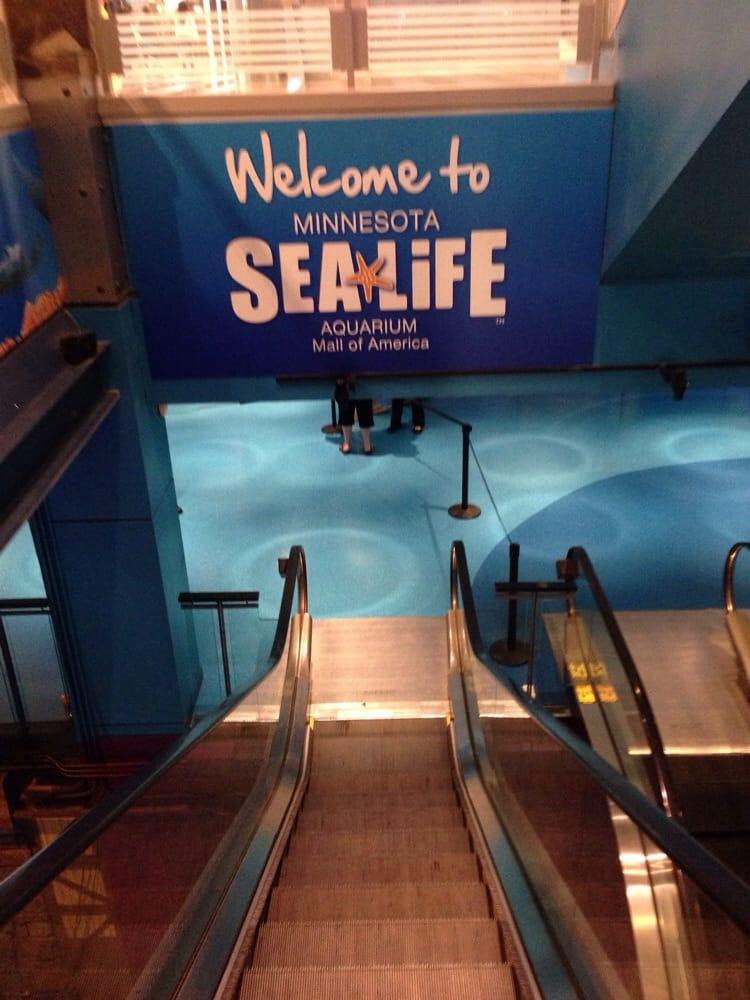 Aquarium Yelp