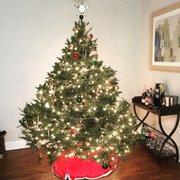 Christmas Trees Paramus