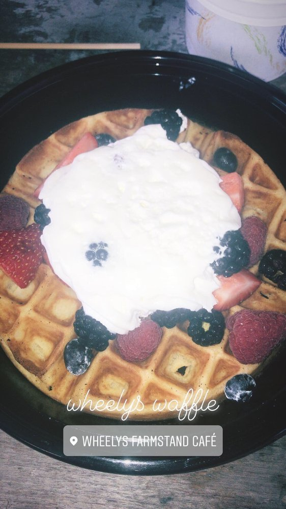 Wheelys Cafe: 791 Frenchtown Rd, New Castle, DE