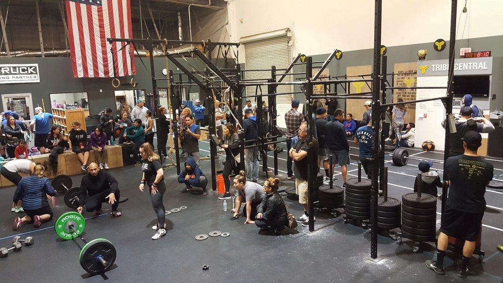CrossFit Tribe