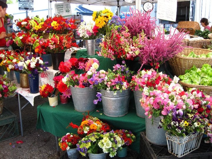 Photo of Santa Cruz Farmers' Market - Santa Cruz, CA, United States. fresh cut flowers