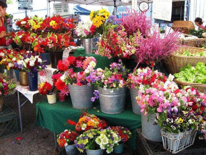 Photo of Santa Cruz Farmers' Market - Santa Cruz, CA, United States. fresh cut flowers