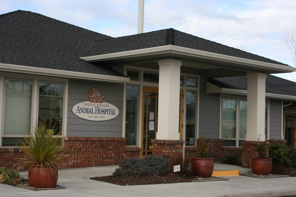 West Main Animal Hospital
