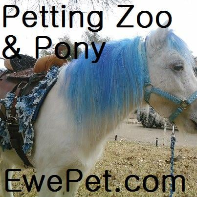EwePet Mobile Petting Zoo & Pony Ride Parties