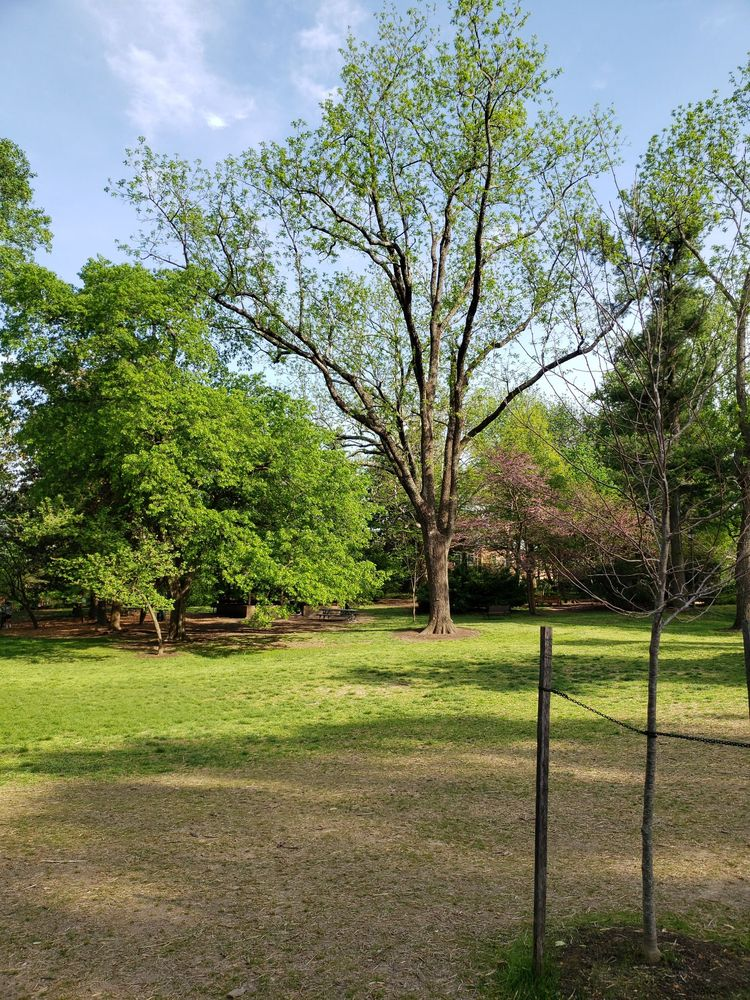 Cherry Hill Historic House & Farm: 312 Park Ave, Falls Church, VA