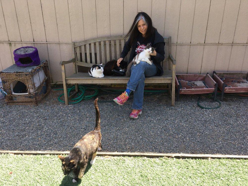 Animal Refugee Response: 11767 Candy Ln, Lower Lake, CA