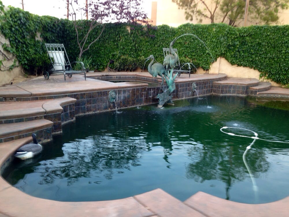 Photos for creative pool designs yelp for Creative pool design jobs