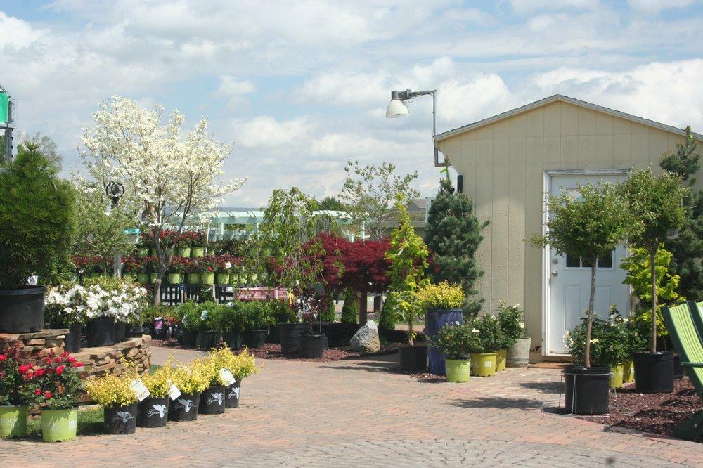 Photo Of Sunny Meadows Greenhouse Boonsboro Md United States Nursery
