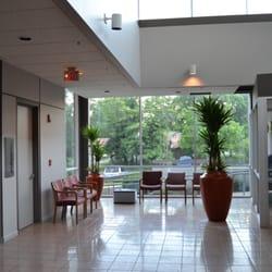 Photo Of Interior Plants
