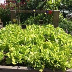 Parcs et jardins une liste yelp par lucie c for Jardin villemin