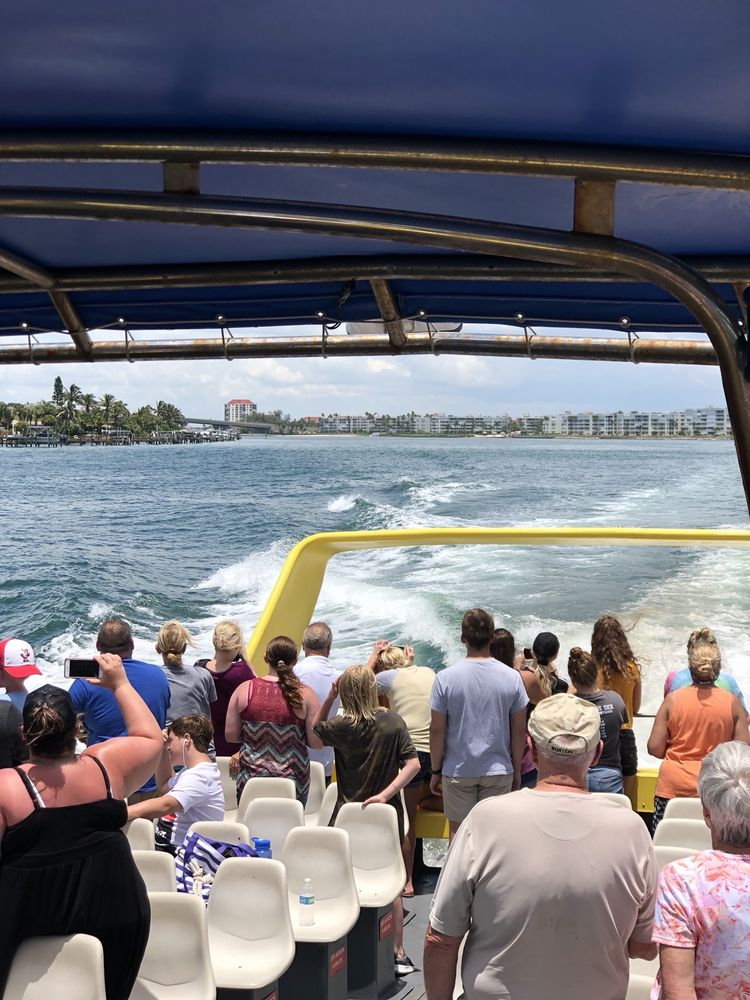 Dolphin Racer: 3400 Pasadena Ave S, South Pasadena, FL
