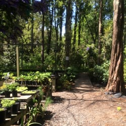Photo Of Sonoma Horticultural Nursery Sebastopol Ca United States