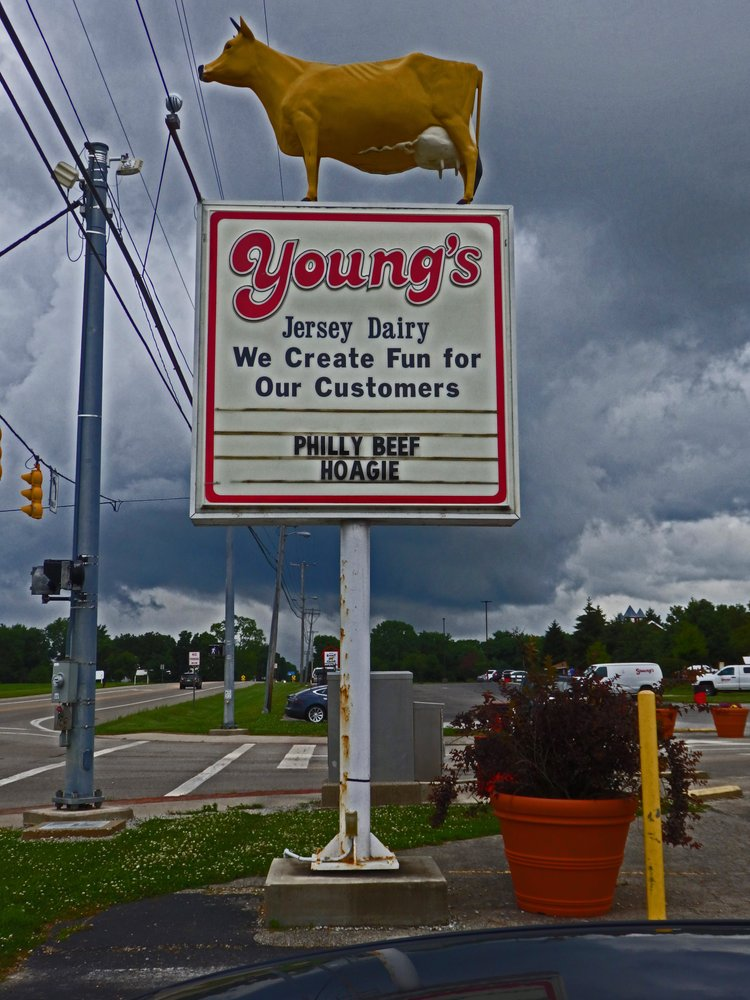 Young's Jersey Dairy: 6880 Springfield Xenia Rd, Yellow Springs, OH