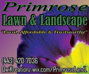 Primrose Lawn & Landscape: Woodbine, MD