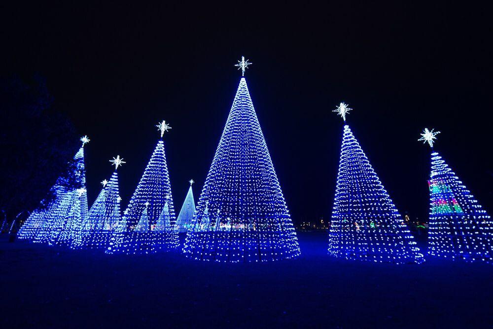 Gulfport Harbor Lights Winter Festival - 10 Photos - Festivals ...