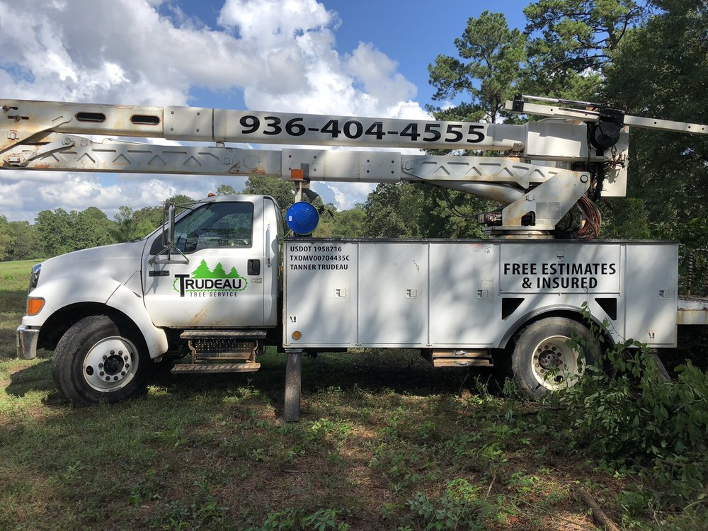 Trudeau Tree Service: 97 Booker St, Wells, TX