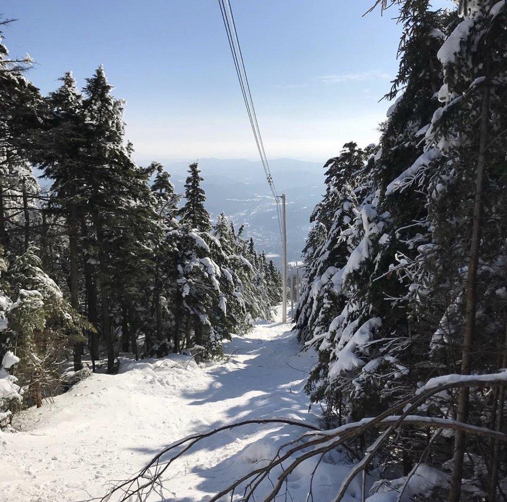 Okemo Mountain Resort: 77 Okemo Ridge Rd, Ludlow, VT