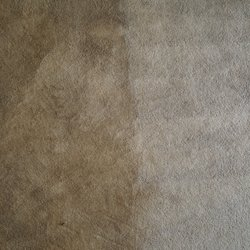 Cleaning Innovations Carpet Cleaning Carpet Cleaning