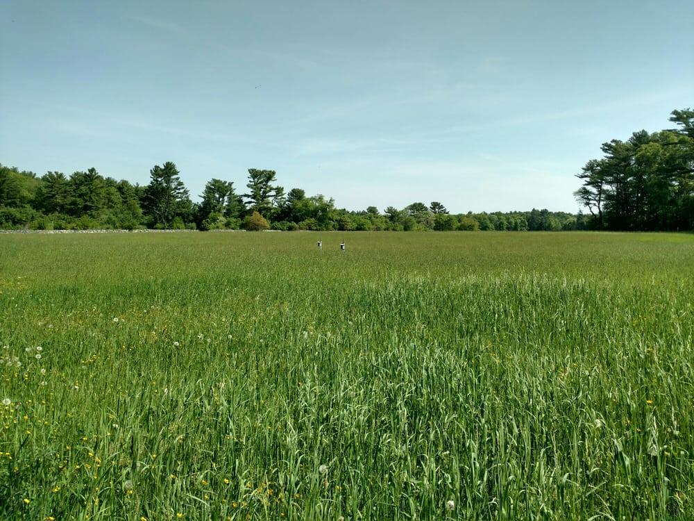 photos for east over farm yelp