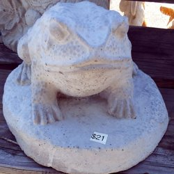 Photo Of The Patio Shop   Tallahassee, FL, United States. $21   Bullfrog
