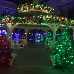Christmas at the Zoo - 71 Photos & 15 Reviews - Local Flavor - 1200 ...