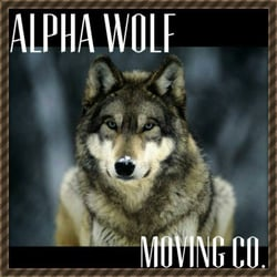 alpha wolf moving 11 photos 22 reviews movers suitland md