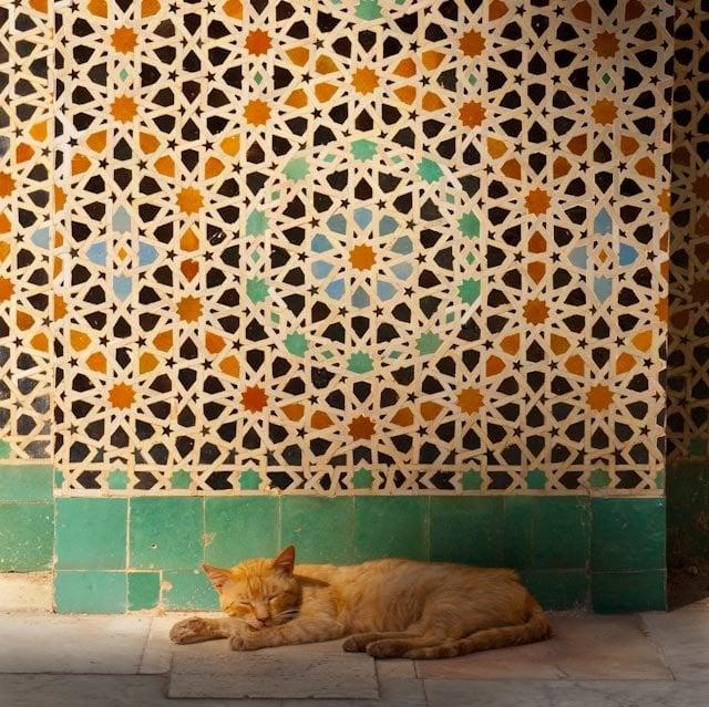 moorish tile wallpaper tile design ideas