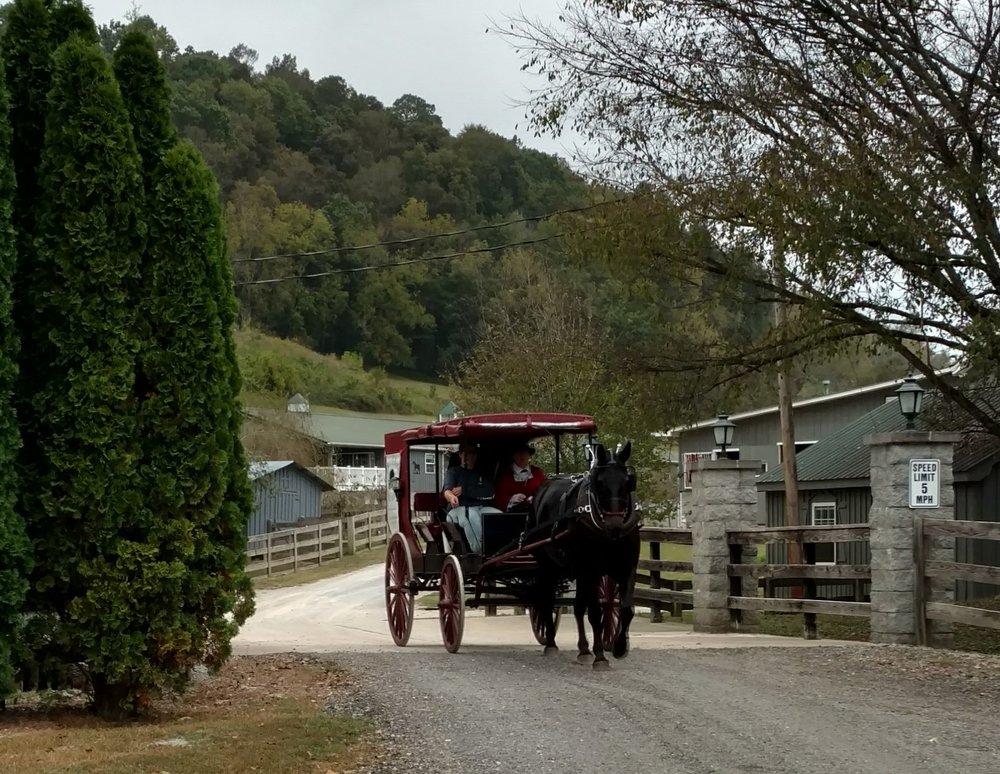 Circle G Ranch: 2355 Campbellsville Pike Rd, Lynnville, TN