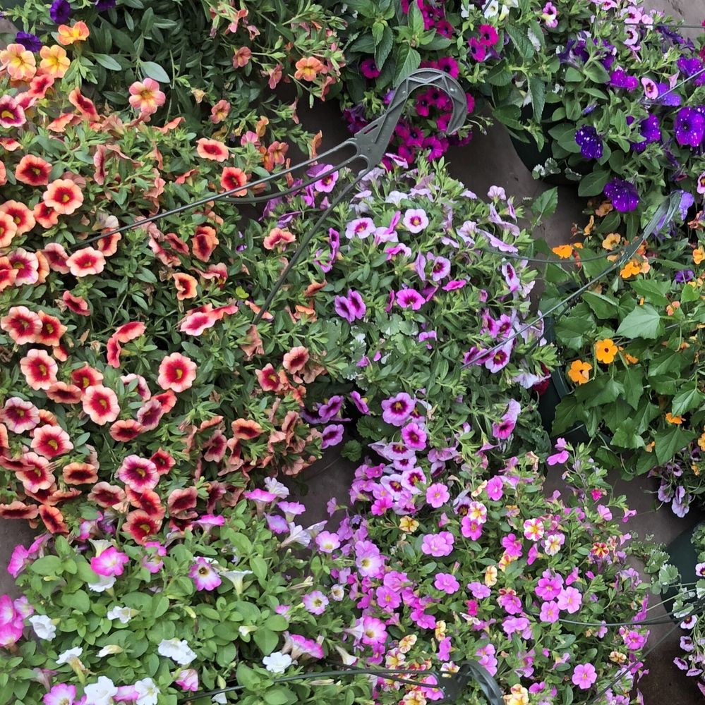 Shulfer's Sprinklers & Landscaping & Garden Center: 2430 Plover Rd, Plover, WI