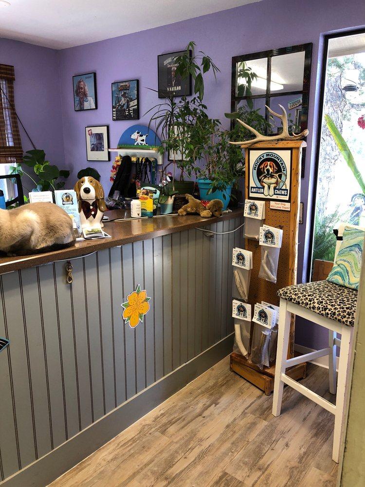 Paradise Doggie Daycare: 30 Prospect Dr, Sutter Creek, CA