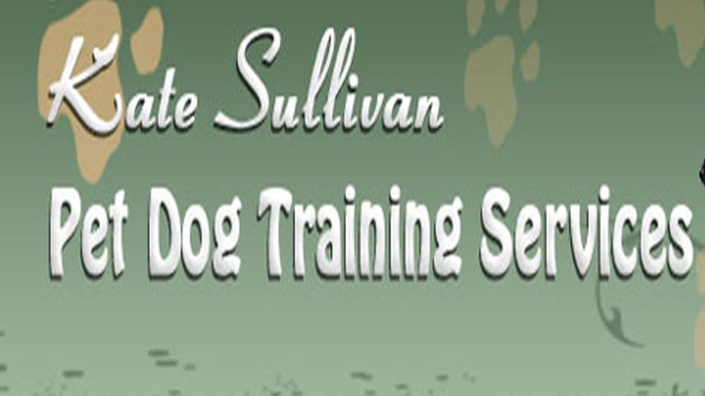 Kate Sullivan Pet Dog Training Services Pittsburgh Pa