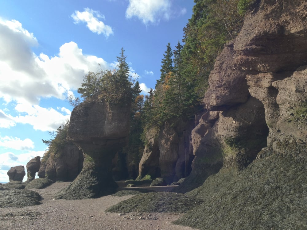 Flower Pot Rocks At Low Tide   Yelp